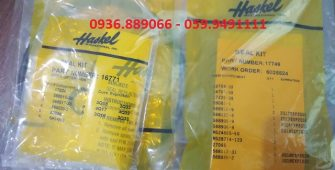 Seal Kit của Bơm Haskel