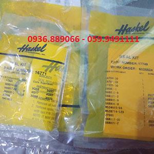 Seal kit thay thế trong bơm Haskel