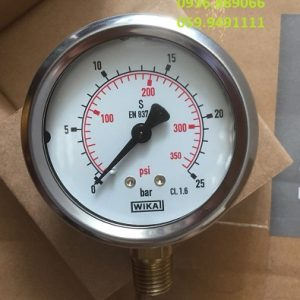0-25 bar(psi) chân đứng đồng D63