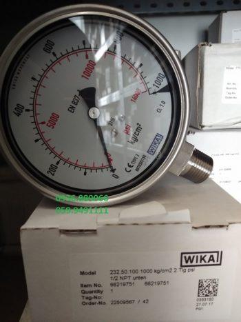 1000 kg/cm2 D100